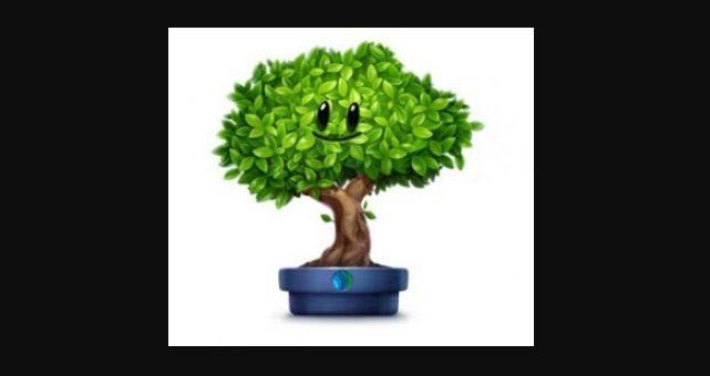 Как получить ВКонтакте подарок Деревце от Экологии России