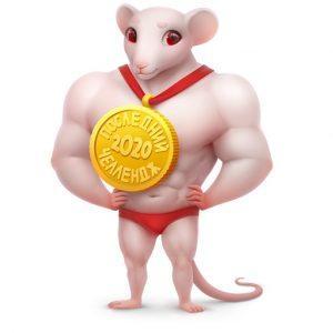 Подарок ВК Крыса Последний Челендж 2020